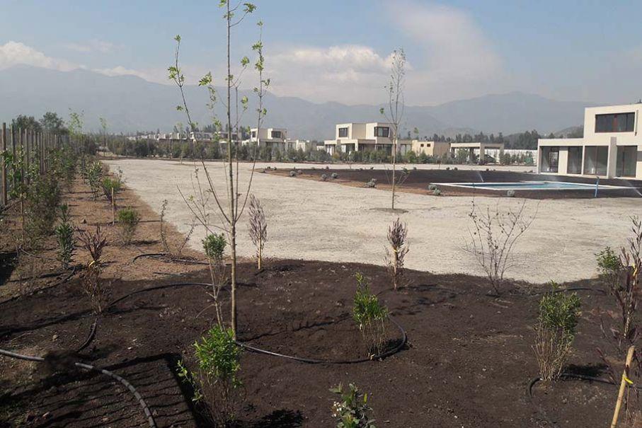 Imagen 105 Jardín mediterráneo sustentable 3