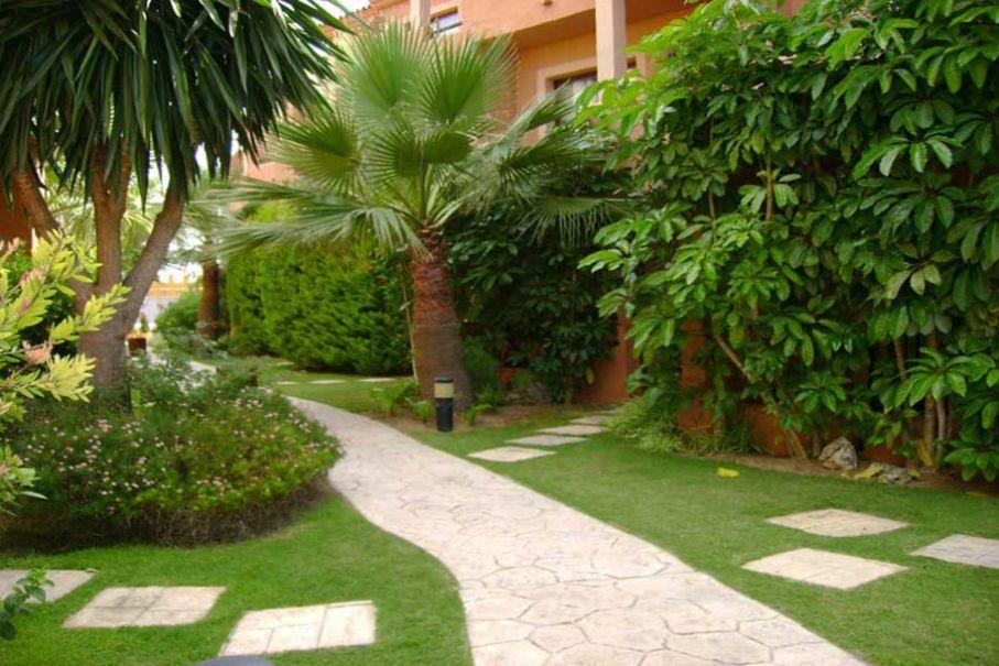 Imagen 82 Jardin estilo tropical