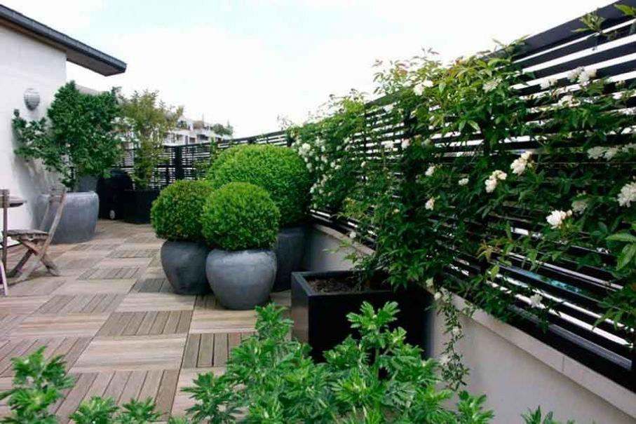 27 Terraza con maceteros